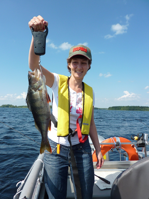 Cottage accommodation and perch spinning trips on Lake Saimaa